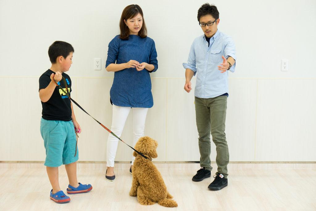 飼い主様と一緒に犬のしつけについて学ぶ
