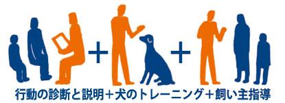 行動カウンセリング 犬のしつけ 飼い主指導