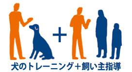 犬のしつけ 飼い主指導