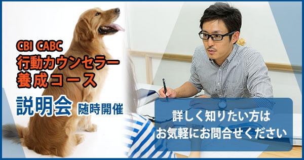 動物行動カウンセラー養成コース説明会随時開催 お問合せください
